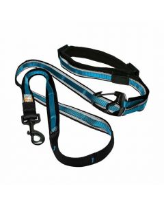 Kurgo Reflect and Protect Quantum Leash Coastal Blue Dog 1X1PC