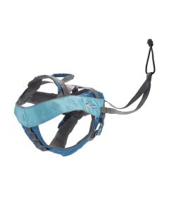 Kurgo Long Hauler Joring Dog Harness Coastal Blue Large Dog 1X1PC