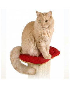 Smart Cat The Ultimate Post Perch with Pad Cat 1X1PC